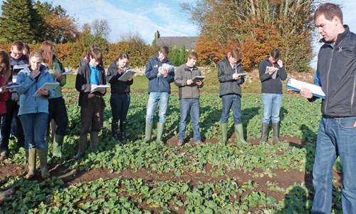 Agricultural students in field - credit SRUC