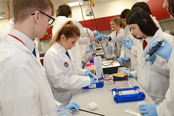 Ebsoc Pupils Get Hands On With Real Scientific Equipment And Learn About Genome Editing